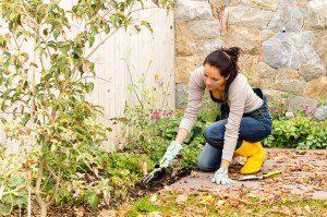 Women working on flowerbed